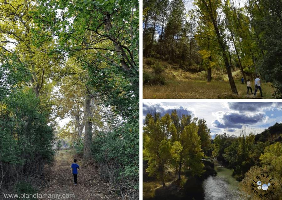 rutas senderismo otoño con niños