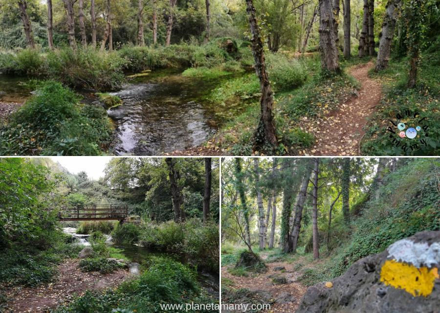 nacimiento rio palanacia